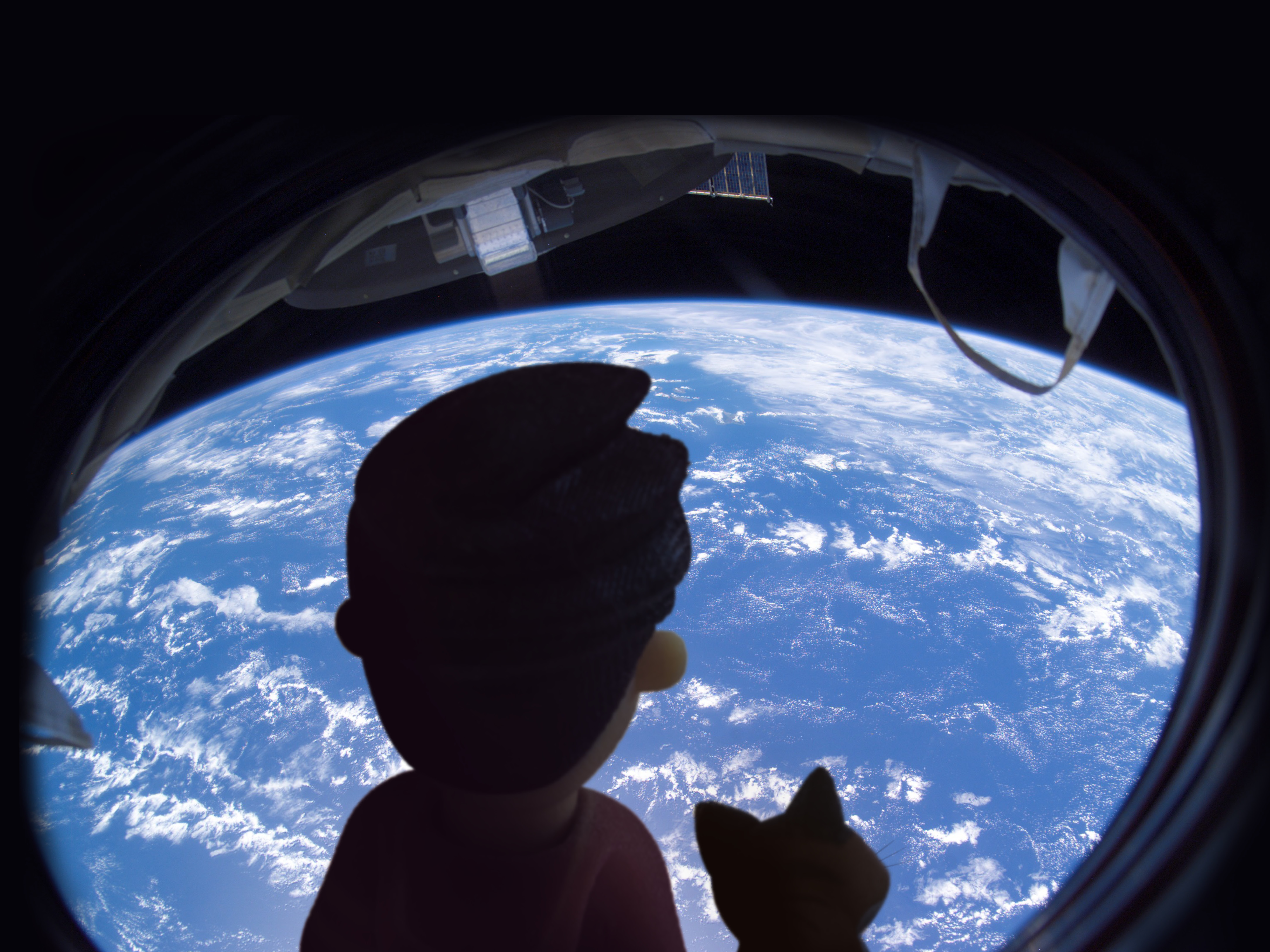 Little James and MiaKat look down at Earth from space